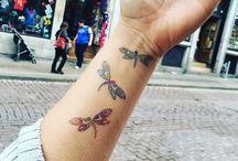 tatou libellule