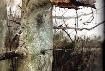 Andrew Wyeth   NC