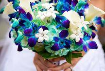 Blue Dendrobium Orchid Wedding Flowers