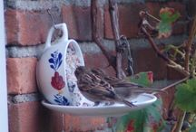 overwintervogels.nl / Mooi en origineel vormgegeven vogelvoer