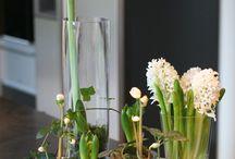 Vinter / Blomster og inspirasjon