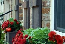 Outdoor Ideas/Front Porch / by Andrea Schuneman {Our Blue Front Door}