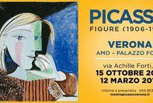 mostra Picasso Verona 06/01/17