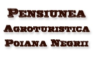 Pensiunea Agroturistica Poiana / Aici, la Poiana Negri, Natura a creat un mic coltisor de Rai din Bucovina. Privelistea feerica, aerul curat, poate cel mai pur din Romania si izvorul de apa minerala din vecinatate au transformat pensiunea Poiana in locul ideal pentru o evadare in natura.