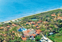 Properties in Giens / Luxury Properties in the French Riviera