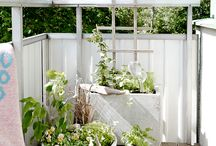 Balcony Gardens / If you're lucky enough to have an apartment with a balcony, a great way to take advantage of your slice of the outdoors is with a balcony garden!  Here are lots of ideas for growing some green on your balcony!