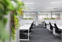 S28 PROJECT - Country Wide Insurance Brokers / STATE28 is proud to showcase this amazing commercial office fit-out