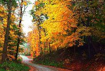 Indiana Nature