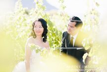 Wedding ceremonies amongst the vines / Picture-perfect wedding ceremonies down amongst the vines at Rippon.