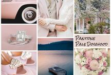 Pantone Inspiration Board for Academy Live / Pantone Inspiration Board
