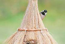 madárházak