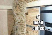 so mom! / COFFEE