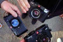 Camera! camera! camera!