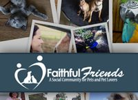 Faithful Friends / A collection of links to the variety of features that we offer!
