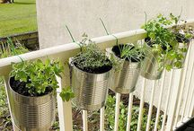 balconi con vasi di latta