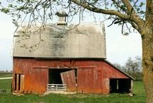 If these walls could talk... / Farm homes and barns / by Lori Fondon