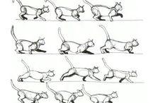 Animation Sheets