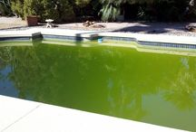 Cleaning Green Pools / Green Pools are not only annoying and hard to get back to blue, but actually against city codes in most cities.  Advanced Pool Care knows how to fix green pools back to blue pools.  We are the company that specializes in not only making your green pool blue again, but keeping it blue by regular maintenance. 602.920.1633