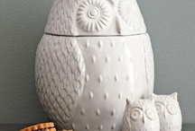 It's a Hoot / by Barbara Ryan