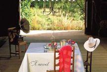 Homecoming Ranch (Book One in the Pine River series) / Meet Julia's lush characters.  Madeline Pruett, Luke Kendrick, and Leo Kendrick.