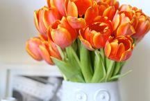 Цветы и вазы