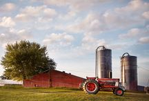 Farms / Farms