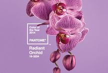 Radiant Orchid: 2014 Color of the Year / Interior Design and Home Decorating tips and inspiration for using Pantone's 2014 Color of the Year: Radiant Orchid