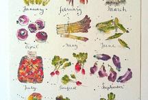 watercolour book trail ideas