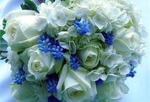 Wedding flowers / by Rachael Meskowitz