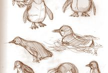 Penguin drawings