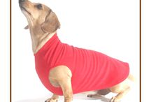 Dachshund Microfleece Sweaters! / Just as a toasty warm apple strudel covers its sugary sweet filling, your doxie will love being enrobed in the warmth of our soft and stretchy Noodle Stroodle! It's the perfect cozy cover for your delicious dachshund...handmade with love in the U.S.A.