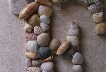 shells craft