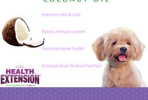 Solution Based Nutrition / Each ingredient in our holistic recipes is conscientiously selected to help provide pets with the healthy lives they deserve #SolutionBasedNutrition