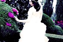 Wedding / by Rebekah Mushinski