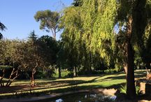 Parks in Rome