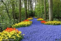 Os Jardins mais Lindos do Mundo