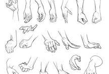 Ilustración de manos y pies