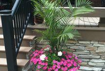 Project patio/yard / by Jennifer Holifield Sheppard