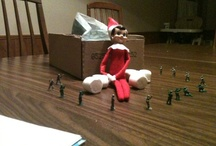 Elf on the Shelf FUN! / by Suzanne Tamburello