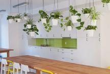 zielone inspiracje