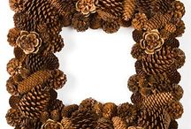 Pinecone Projects / by Sherri Hall