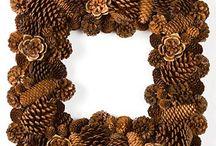 Kottar/pinecone