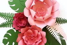 Mayapaperflower