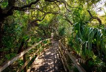Cocoa Beach FL / by Ricki Snider