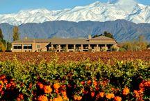 Posada & Bodega Vistalba / La posada y #bodega #Vistalba se ubica en Vistalba, a pocos kilometros de Mendoza Capital. Cuenta solo con 2 exclusivas habitaciones.