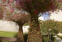 structure jardin
