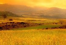 SA: Northern Cape