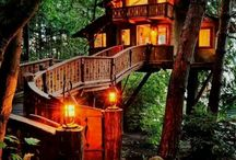 Tree House Home? / by Laura Dickie