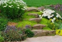 vize zahradní