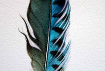 Feathers / by Inner Compass Designs
